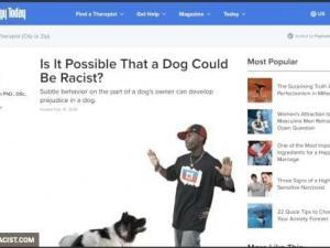 Damn White People And Their Dogs