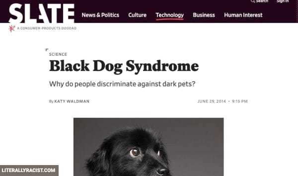Damn White People And Their Racist Way of Not Adopting Black Pets